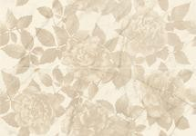 Декор Allmarble wall golden white satin decoro rose 80x120