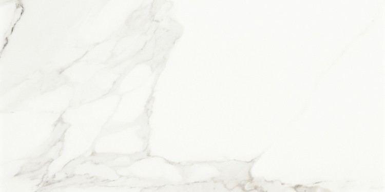 Гранитогрес Evolutionmarble Calacatta 30x60